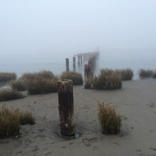 Old Pier in Fog, Hikshari Trail, Eureka
