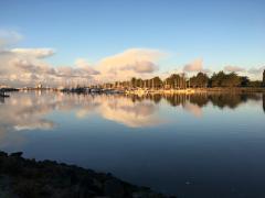 Dawn. Humboldt Bayy